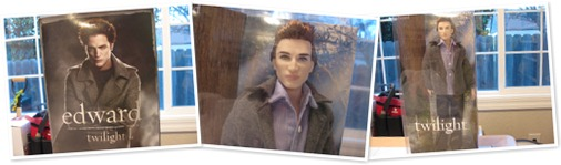 View Twilight Edward Doll