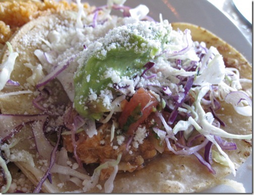 The BEST Chicken Tacos I've ever eaten