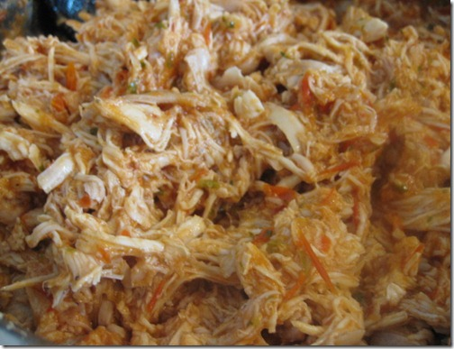 Spicy Shredded Salsa Chicken