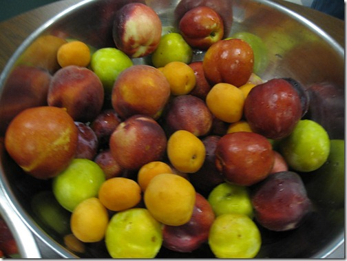Pluots, Nectarines, Peaches