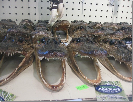 Creepy Gator Heads