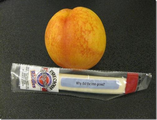 nectarine & string cheese