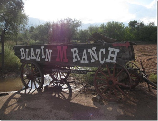 Blazin M Ranch