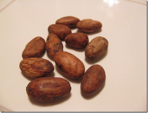 Cacao Beans In The Raw
