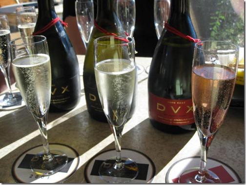 DVX Champagne