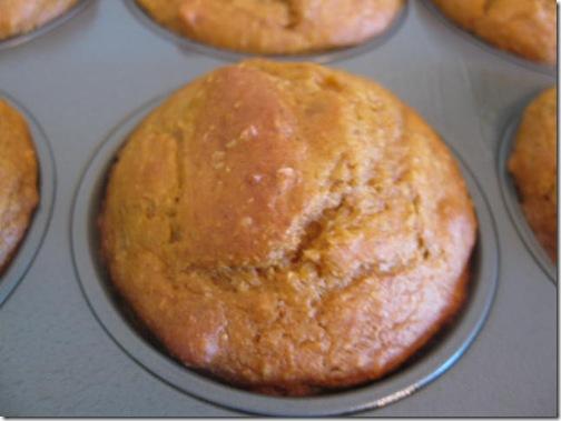 Quick Pumpkin Muffins